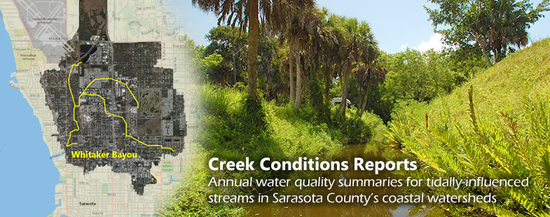 Creek Conditions Reports