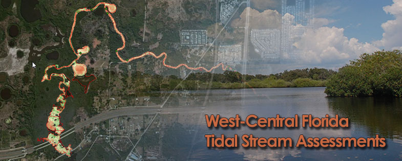 West-Central Florida Tidal Stream Assessments