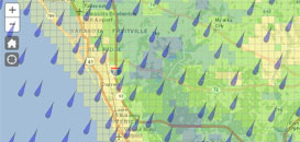 Rainfall Estimates